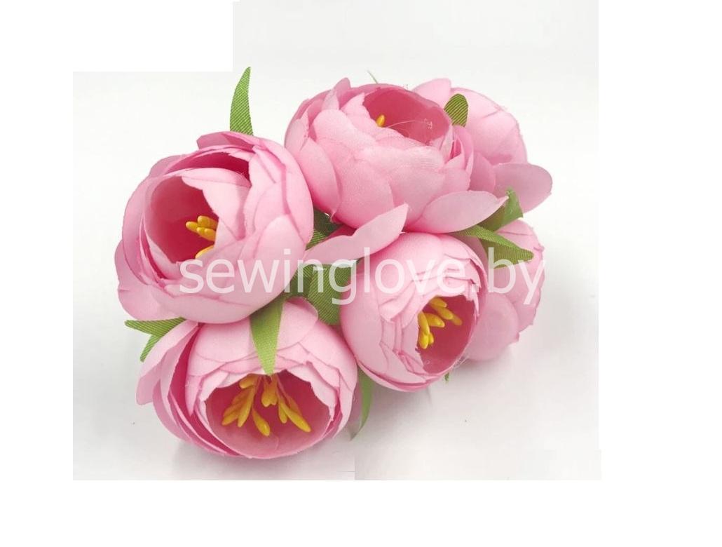 Цветы пион в бутоне розовые