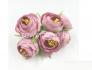 Цветы пион в бутоне темно-розовый_0