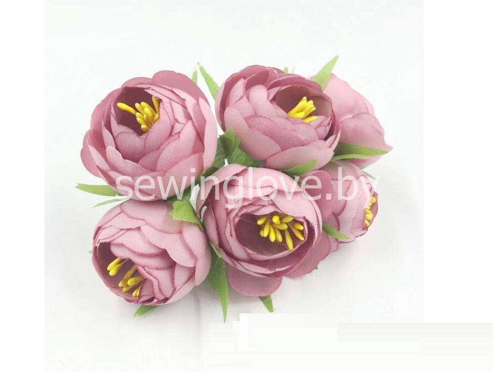 Цветы пион в бутоне темно-розовый