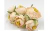 Цветы пион в бутоне айвори_0
