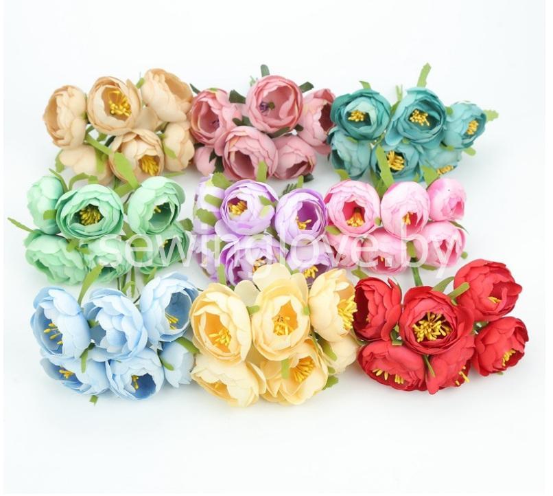 Цветы пион в бутоне бирюзовый