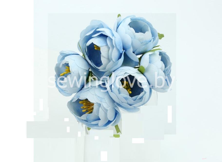 Цветы пион в бутоне голубой